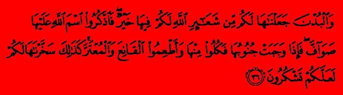 Al Quran - English Translation - Surah Al-Hajj